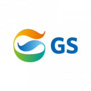 logo-partner-web-gs