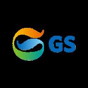 logo-partner-web-gs